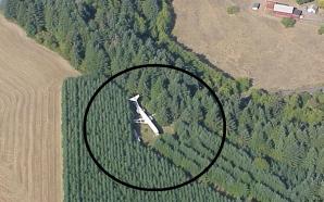 Avionul din pădure