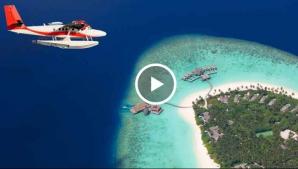 Insule închiriate