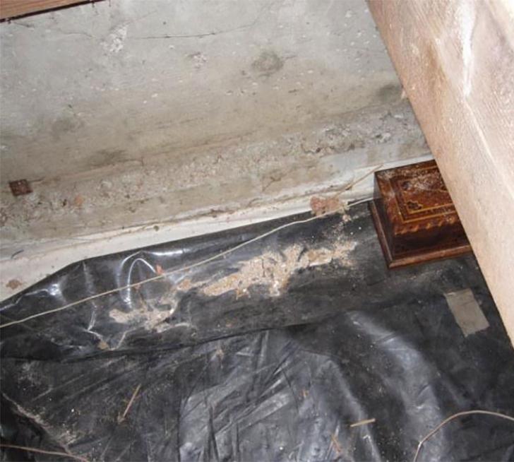 Au cumpărat o casă şi au găsit o TRAPĂ în podea.Acolo, era o cutie.Au deschis-o, s-au ales c-o AVERE