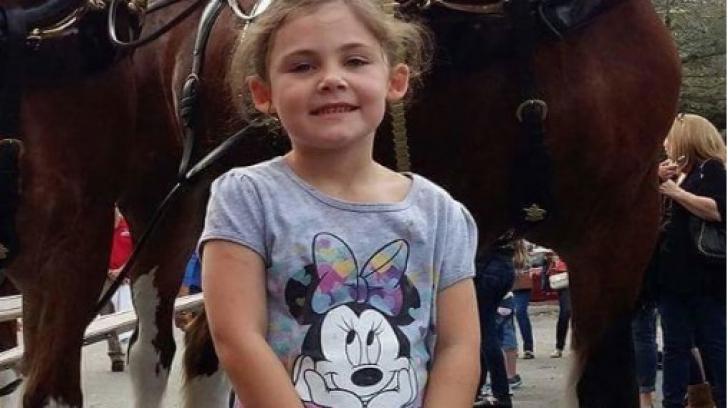 Fetița a vrut o poză cu un cal. Când au văzut fotografia, au murit de râs