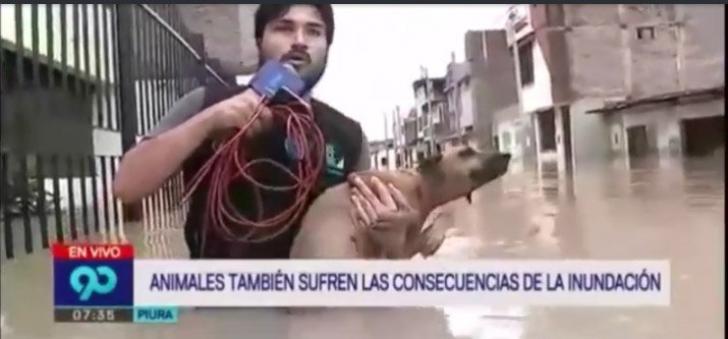Gest EXTRAORDINAR al unui reporter - de ce a oprit transmisiunea în direct - VIDEO