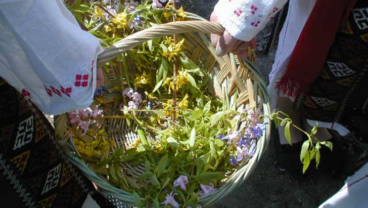 Floriile 2017 traditii si obiceiuri
