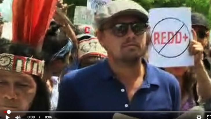 VIDEO. Leonardo Di Caprio, în fruntea unui protest la Washington, printre zeci de mii de oameni