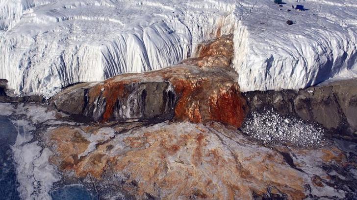 """Misterul """"sângeros"""" al Antarcticii a fost ELUCIDAT după mai bine de un secol de la descoperire"""