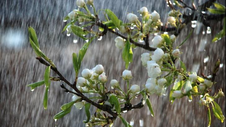 ALERTĂ METEO! Atenţionare de ploi, vijelii şi căderi de grindină! Ce zone sunt vizate