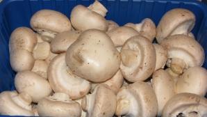Greşeala pe care o fac gospodinele când gătesc ciuperci. Bonus: Cea mai bună ciulama de ciuperci
