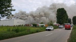 Anchetă la depozitul de arhive din Ilfov făcut scrum în urma unui incendiuc