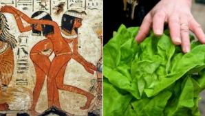 Legătura şocantă dintre salata verde şi sex. Secretul egiptenilor