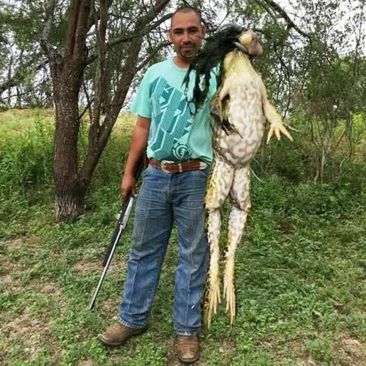 Un bărbat se mândreşte că a prins o broască uriaşă. Care este adevărul din spatele imaginilor?