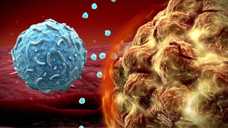 Medicament anticancer care țintește tumorile fără să afecteze țesuturile sănătoase aproabe aprobat