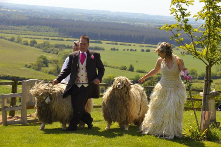 10 cele mai ridicole fotografii de nuntă. Nu te poți abține din râs
