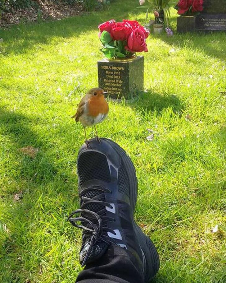 """La mormântul fiului ei i-a spus în gând: """"Dă-i lui mami un semn"""". Ce a urmat este copleșitor"""