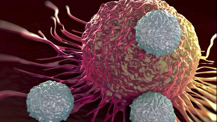 Acesta este alimentul care omoară celulele canceroase