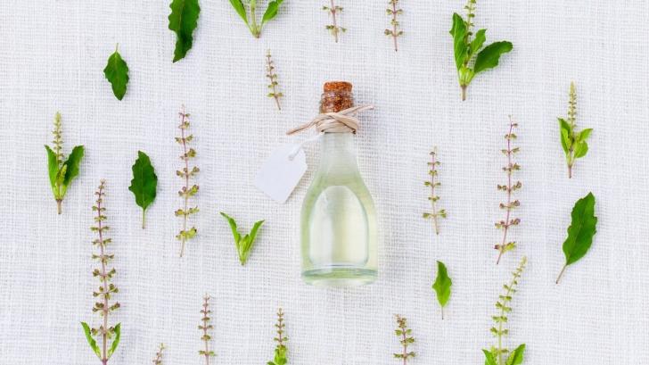 Cum să scapi de ţânţari cu ulei de mentă