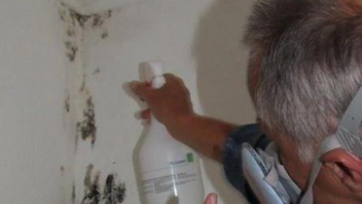 Cum să scapi de mucegai fără ajutorul chimicalelor. Pentru totdeauna!
