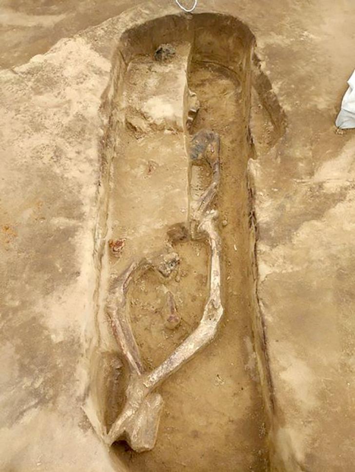 """Descoperirea care a uimit omenirea! Cum arată """"SCHELETUL DANSATOR"""". Arheologii sunt fascinați"""