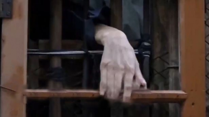 Părinții l-au închis într-o cușcă timp de 30 de ani. Motivul este revoltător!