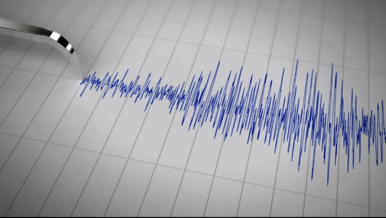 Cutremur în Vrancea, în urmă cu puţin timp