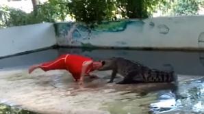 Crocodilul din Thailanda