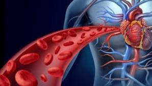 Amestecul care stimulează circulaţia sângelui