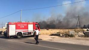 Zeci de români, EVACUAŢI dintr-o clădire din Italia, din cauza unui incendiu de vegetaţie / Foto:telebari.it