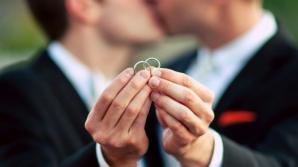 Germania se pregăteşte să legalizeze căsătoriile între persoanele de acelaşi sex