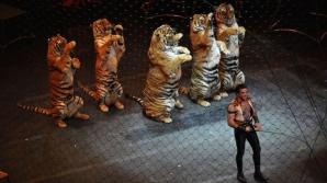 Niciun circ din România nu va mai folosi animale sălbatice în spectacole