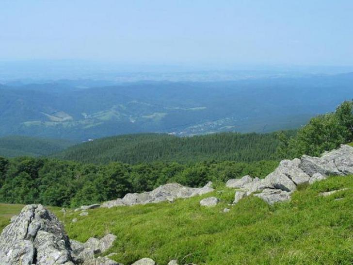 Sălbăticia naturii surprinsă într-un filmuleţ uimitor, în munţii Banatului