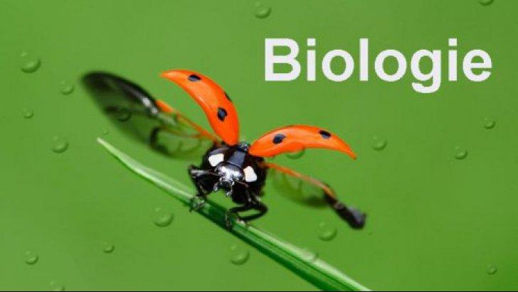 Subiecte Biologie BAC 2017