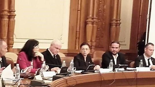 Comisia de anchetă a alegerilor din 2009 se reuneşte în…