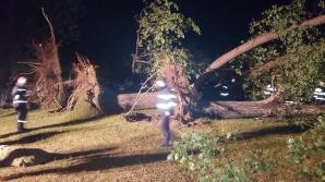 Plan roșu de urgență în Bihor, după o furtună puternică. Un om a murit, cel puţin 10 sunt răniți