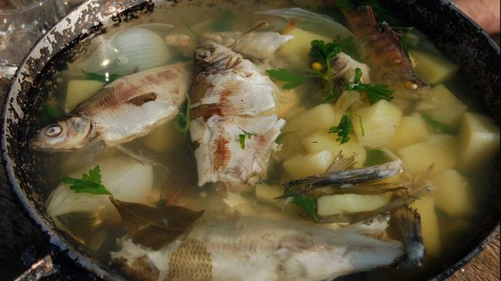 Renunță la supa de pește! Cum te poate îmbolnăvi