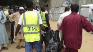Nigeria: Cel puțin 31 de pescari au fost uciși sâmbătă de gruparea jihadistă Boko Haram