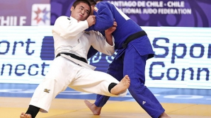 Campion mondial la judo