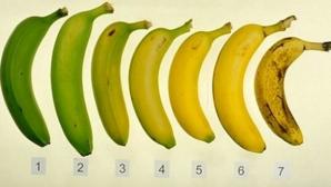 Vezi când este cel mai bine să consumi bananele