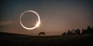 Cele mai spectaculoase fotografii cu eclipsa totală de soare. Sunt incredibile