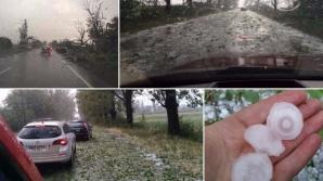 <p>Furtunile au făcut ravagii în ţară: Acoperişuri smulse, copaci puşi la pământ şi drumuri blocate</p>