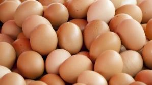 Ouă retrase de pe piaţă