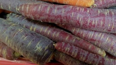 Morcovul violet, o sursă de sănătate. Uite ce beneficii are asupra organismului