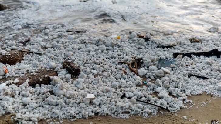 Dezastru pe litoral, plaje închise. Ce au găsit turiștii când au ajuns dimineață la mare