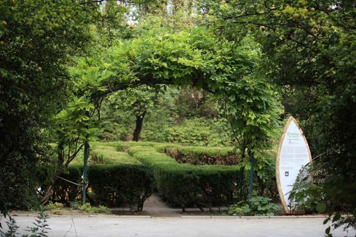 Secom® a finalizat amenajarea sectorului de plante medicinale și utile din Grădina Botanică (P)