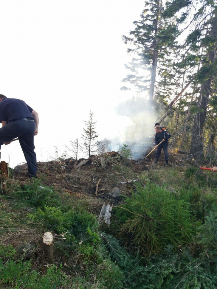 Incendiu puternic în Bistrița-Năsăud. Au ars opt hectare de pădure