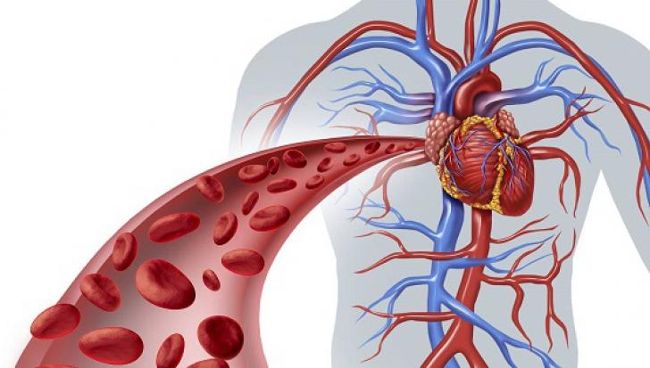 Cum știi că ai probleme cu inima. Simptomele pe care mulți oameni le ignoră până e prea târziu