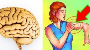Cele cinci semne care te anunţă că urmează să ai un atac cerebral! Nu le mai ignora niciodată!