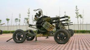 Armele de apărare anti-aeriană folosite la execuțiile în masă
