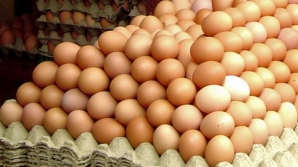 Ouă contaminate în 40 de ţări, inclusiv în România. Anunţul Comisiei Europene