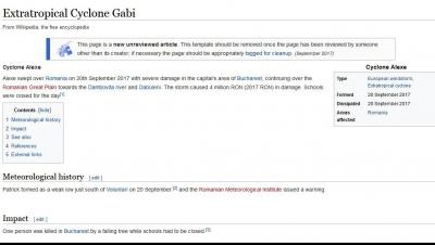 Furtuna Gabrielei Firea rămâne în istorie! Internauții au creat o pagină de Wikipedia
