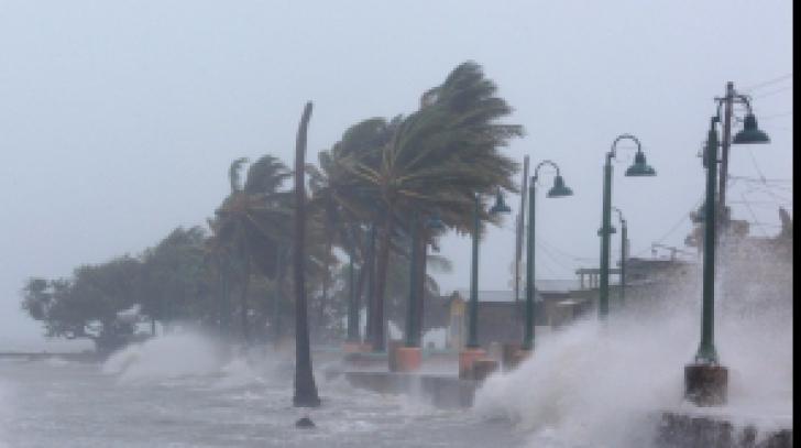 Uraganul Irma: Declarațiile românilor captivi în orașele fantomă din Florida