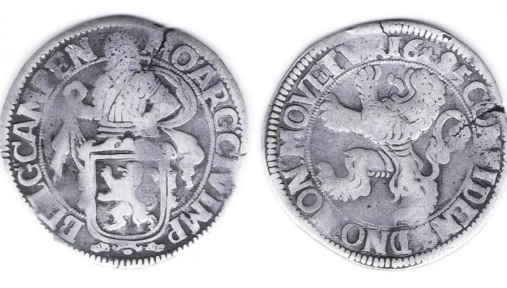 De unde îşi trage moneda noastră naţională denumirea de leu