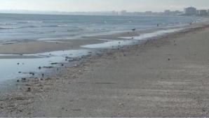 Fenomen înspăimântător pe litoralul românesc! Marea s-a RETRAS! Specialiştii sunt în alertă